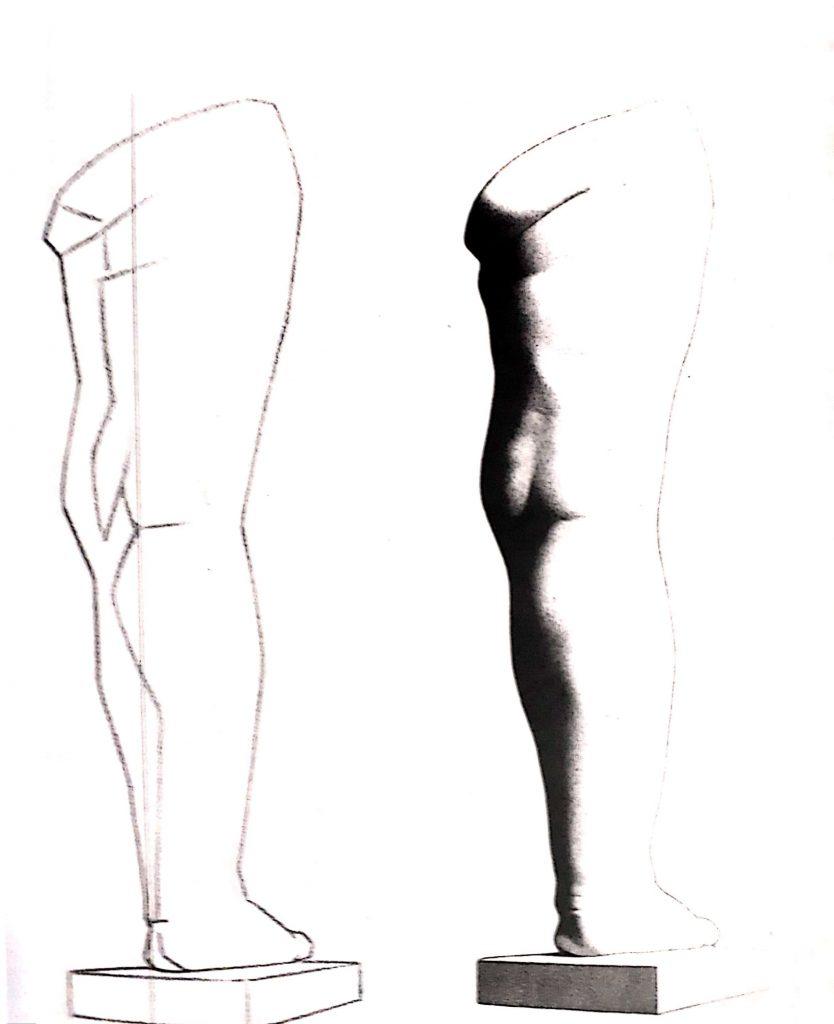 bargue pernas exercicio desenhar 1 834x1024 - Aprender a desenhar: esboço, uma etapa essencial