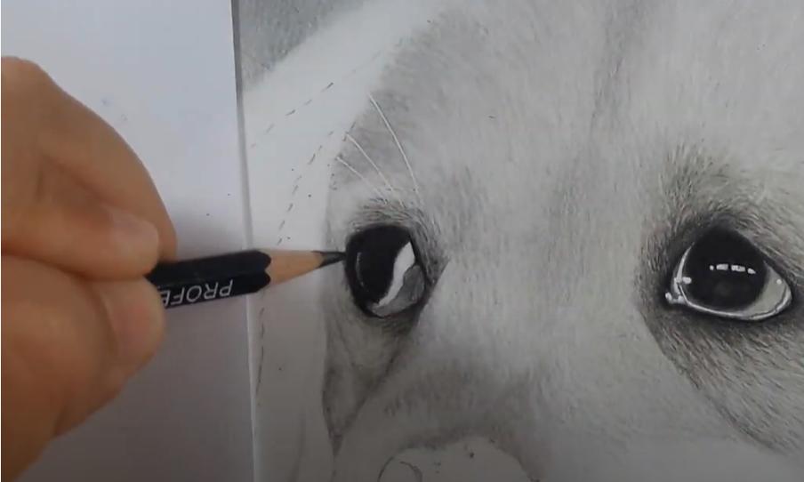 desenhando com papel sulfite entre a mao e o papel - Desenhar preto e branco - as 3 Principais Formas