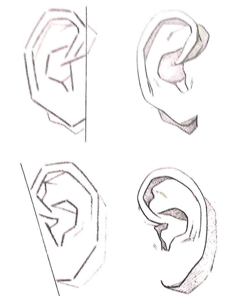 exercicios orelhas 1 829x1024 - Aprender a desenhar: esboço, uma etapa essencial