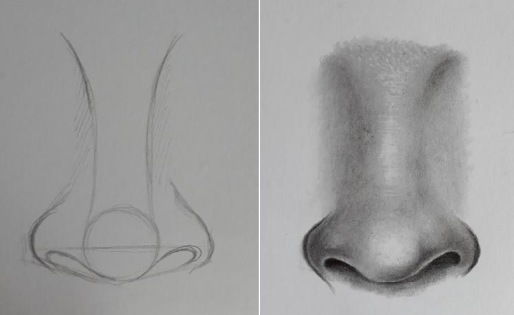 como desenhar facil nariz - Como desenhar nariz passo a passo descomplicado