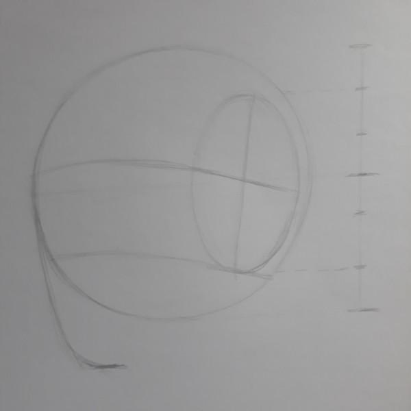 metodo de loomis 6 - Como desenhar rosto - tutorial método Loomis parte 1