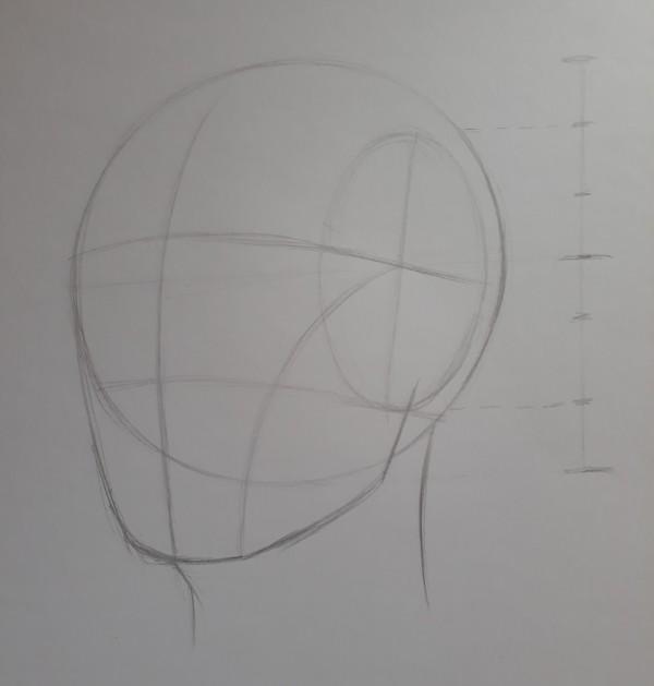 metodo de loomis 9 - Como desenhar rosto - tutorial método Loomis parte 1
