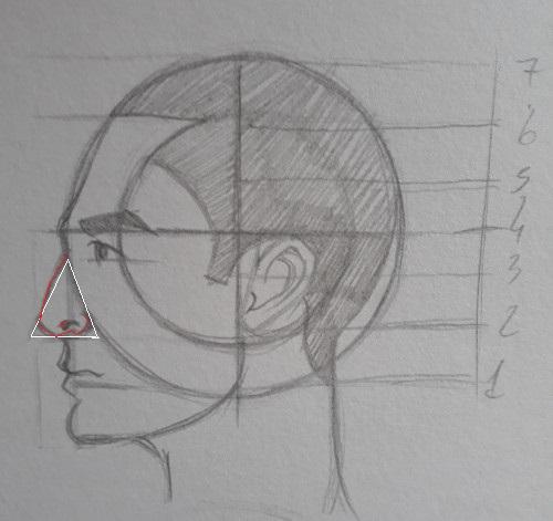como desenhar nariz metodo Loomis - Como desenhar rosto - tutorial método Loomis parte 2