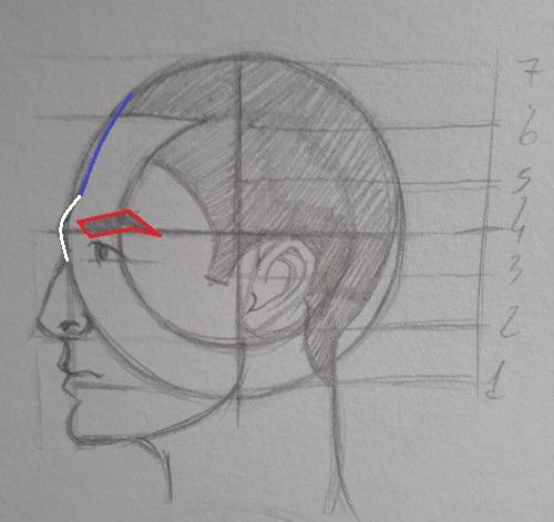 como desenhar olho e sobrancelha - Como desenhar rosto - tutorial método Loomis parte 2