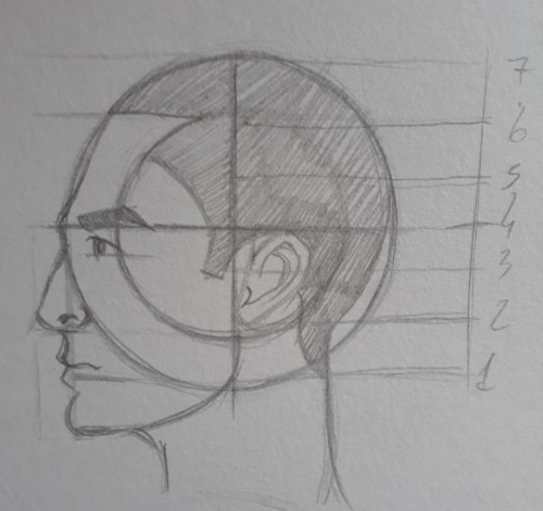 como desenhar rosto ultimo passo - Como desenhar rosto - tutorial método Loomis parte 2