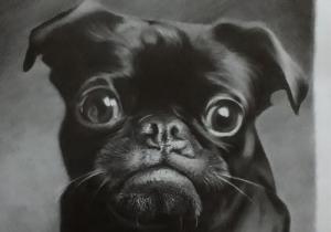 imagem destacada como desenhar animais 1 300x210 - O Caminho da Arte