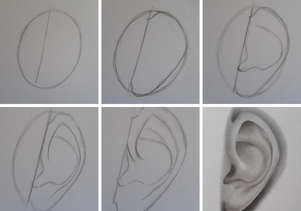 como desenhar orelha