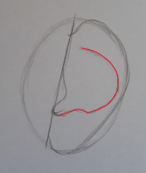 como desenhar orelha passo 4 marcada - Como desenhar orelha em 7 passos fáceis e rápidos