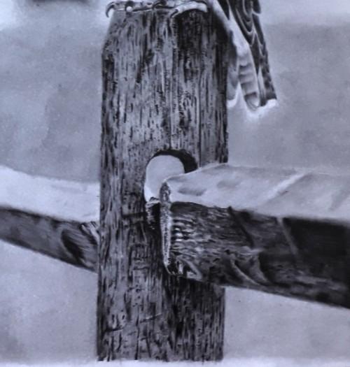 desenho de madeira - 7 Inspirações inovadoras de coisas bonitas para desenhar