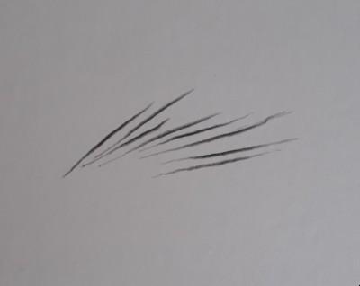 traco de pelos - Como desenhar sobrancelha - passo a passo descomplicado