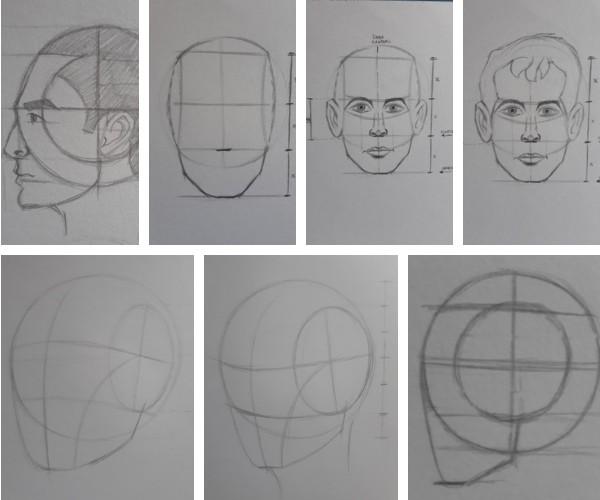 metodo loomis de como desenhar rosto - Desenhar Passo a Passo: principais etapas de aprendizado